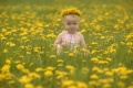 Baby, girl, in a spring meadow