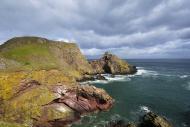 St Abb\'s Head cliffs, bird s...