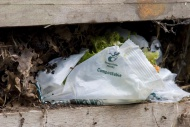 Compostable plastic bag, in c...
