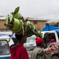 Man carrying Khat on his head...