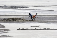 Salt workers in a salt lake, ...