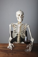 Skeleton holding a glass of r...