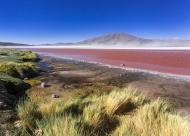 South America, Bolivia, Ataca...