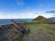 Cannon at Fort Rodney, Pigeon...