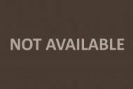 Tesla Motors emblem, closeup ...