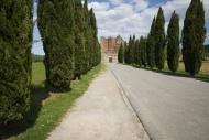 Italy, Tuscany, Approach road...