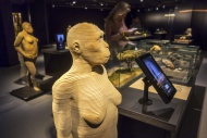 Life-size 3D reconstructions ...