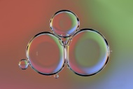 Water bubbles on oil