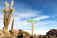 Bolivia, Potosi, Arrow sign a...