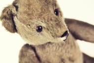 Old teddy-bear, close-up