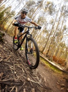 Mountain biker driving in the...