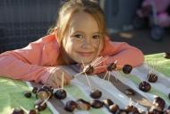 Girl, child creating chestnut...