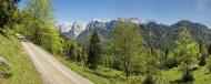 Austria, Tyrol, Alps, Kaisert...
