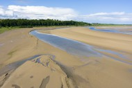 The Taw Estuary viewed from T...
