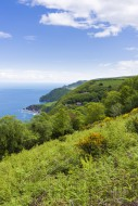 View of Woody Bay and the Bri...