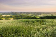 View over the Somerset Levels...