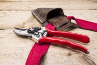 Secateurs Felco no 2, and lea...