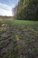 Ruined grassland / meadow at ...