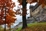 Castle in autumn with trees i...