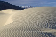 Mesquite Sand Dunes with the ...