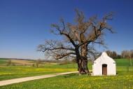 Antoniuskapelle in Haselbach,...