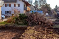 Green waste after clearing a ...