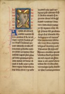 An Eagle; Unknown; Th�rouanne...