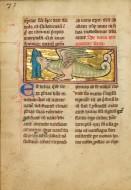 A Sawfish; Unknown; Th�rouann...