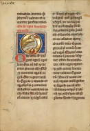 A Swan; Unknown; Th�rouanne? ...
