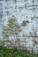Camouflage painting on rear o...