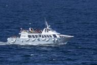 Excursion boat Armor Navigati...