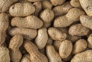 Close-up of peanuts / groundn...