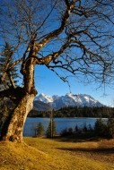 The Barmsee in Upper Bavaria,...