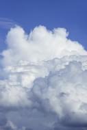 Developping Cumulus congestus...