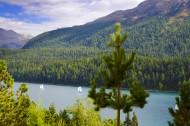 St Moritz Alpine Lake with Sa...