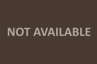 A grassy, hedged-in parking s...