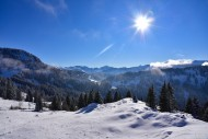 View from the Mittelalpe abov...