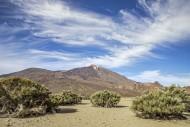 Mount Teide / El Teide / Pico...