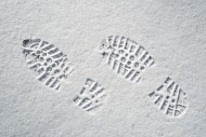 Clearly defined footprints / ...