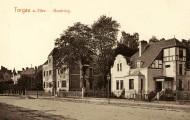 Buildings in Torgau, 1910, La...