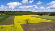 Arable, arable farming, agric...