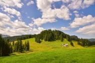 Alm in the Lochbachtal near O...