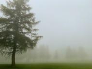 Crans Sur Sierre Golf Course ...