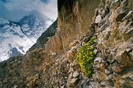 The mountain range Central Ti...